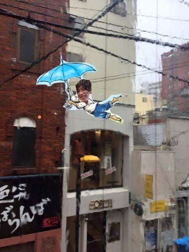 台風とたんぽぽ